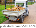 Small electric truck removing fallen leaves in body at autumn city park. Municipal urban services 55933274