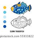 Coloring book, Clown triggerfish 55933822