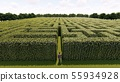 Man walking into the big labyrinth 3D rendering 55934928