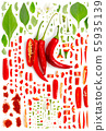 Chili pepper Collection Abstract 55935139