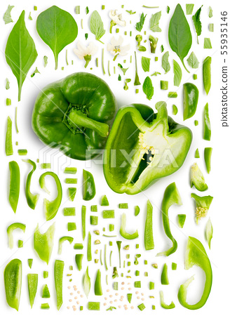 Green Pepper Collection Abstract 55935146