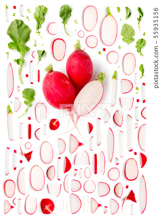 Radish Collection Abstract 55935156