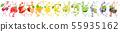 Fruit Splash Collection 55935162