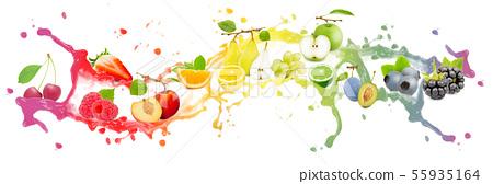 Fruit Splash Collection 55935164