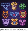 animal neon icons 55945462