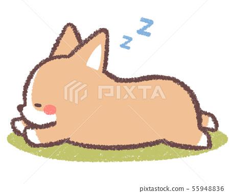 小狗睡覺 - 與背景 55948836