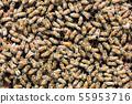 꿀벌, 꿀, 양봉 사람 55953716
