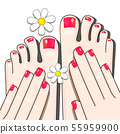 Pedicure Female Fingers Vector Illustration Of 55959900