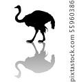 Ostrich silhouette 55960386