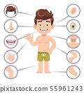 Kid body parts. Human child boy with eye, nose and chest, head. Knee, legs and arms cartoon 55961243