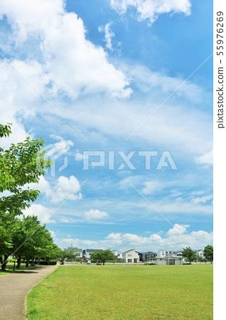 清新的藍天公園風景 55976269