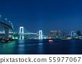 彩虹橋夜視圖 55977067