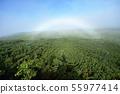 홋카이도의 숲에 걸려있는 흰 무지개 (霧虹 · 호구보) 55977414