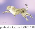 뛰어 오르는 치타 Jumping_cheetah 55978230