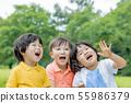 신록의 공원에서 노는 아이들 55986379