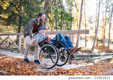 Senior father with wheelchair and his son on walk in nature. 55991911