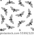 Cicada Insects Seamless Pattern with White Background. Vector 55992320