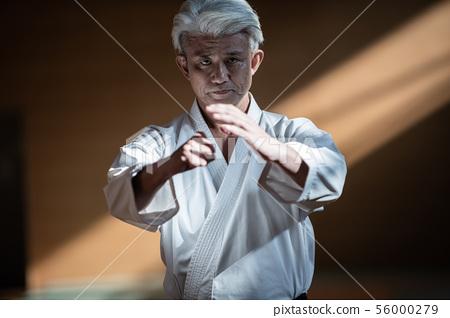 karateka 56000279