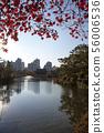 盆唐湖公園 56006536