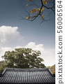 韓屋,傳統民居,屋頂 56006564