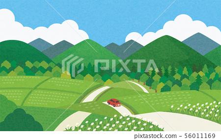 시골 여름 56011169