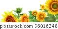 블로그 용 헤더 이미지 해바라기 56016248
