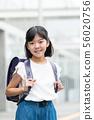 초등학생 소녀 학교 학교 생활 이미지 56020756
