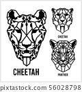 獵豹 ICON 圖示 56028798