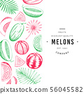 Watermelon, melon and tropical leaves design 56045582