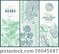 Set of tree culinary herbs banner templates. Hand 56045687