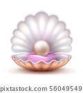 Open oyster sea shell with valuable pearl isolated. Realistic 3d vector illustration 56049549