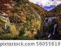 (이바라키 현) 袋田の滝 단풍 56055619