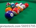 Pool 56055795