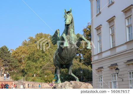 Pegasus sculpture in the mirabellen garden 56067657