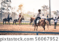 young girl is training to ride a horse horse is in 56067952