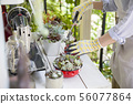 원예 이미지 다육 식물의 다양한 설치를하는 여성 수중 56077864