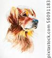 watercolor portrait of a golden retriever 56091183
