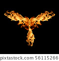 Abstract Fire flame on black background 56115266