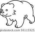 bear 56115925