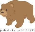 bear 56115933