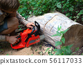 guy sawing wood with a chainsaw 56117033