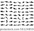Black shark silhouettes on the white background 56124859