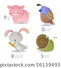 Alphabet with animals from P to S 56139493