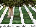 Grave stones in Arlington cemetery. 56157949