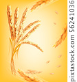 Nature background with ears of wheat. Vector. 56241036