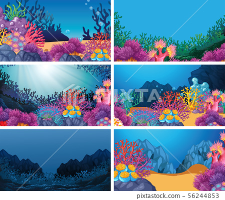 Set of scenes in nature setting 56244853