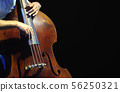 The musician playing double bass. 56250321