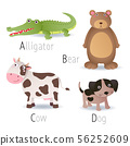 Alphabet with animals from A to D Set 2 56252609