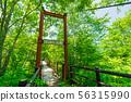 平湯大滝까지의 중간 있는지 혹시 다리 56315990