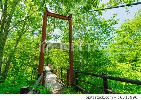 Kamashika Bridge on the way to Hirayu Falls 56315990